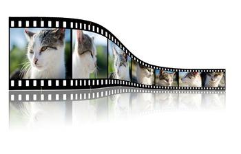 Using Video Files