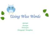 Using Wise Words: Antonym, Synonym, Homophone, Homograph Lesson