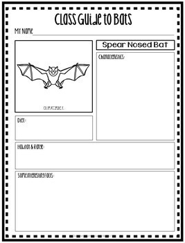 Index Skills in the School Library Media Center Bat Theme