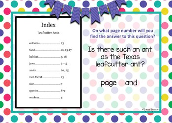 Using an index - Boom Cards Interactive Task Cards - Parts of a Book
