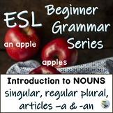 ESL EFL Grammar Intro to Nouns: Singular & Regular Plural, Articles A vs. An