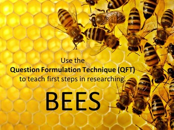 Researching Bees Using the Question Formulation Technique