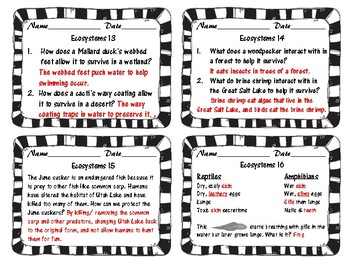 Utah 4th Grade Ecosystems Daily Review Slips