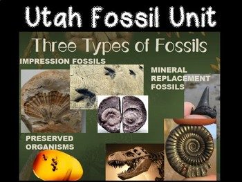 Utah Fossil Science Unit