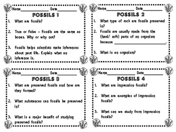 Utah 4th Grade Fossils Daily Review Slips