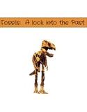 Utah Fossils Packet