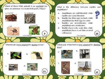 Utah environments, plants and animals: review and test prep task cards