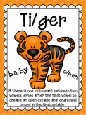 V/CV- Tiger Pattern Word Mini Lesson Set