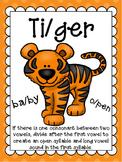 V/CV- Tiger Pattern Word Mini Lesson Set