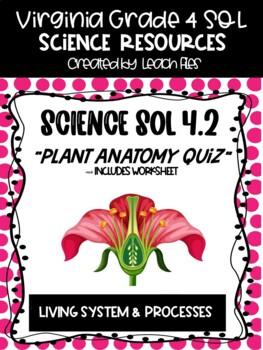 GRADE 4 VIRGINIA SCIENCE SOL 4.4 PLANT ANATOMY QUIZ