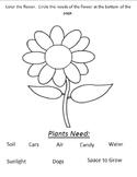 VAAP-Plant Needs