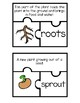 VAAP Plant Structures and Functions (5th Grade Science)