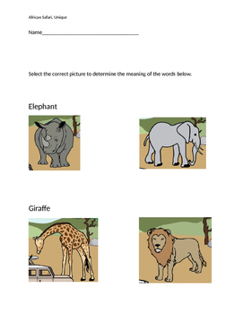 "VAAP Words Meanings - ""African Safari"" (Low Level)"