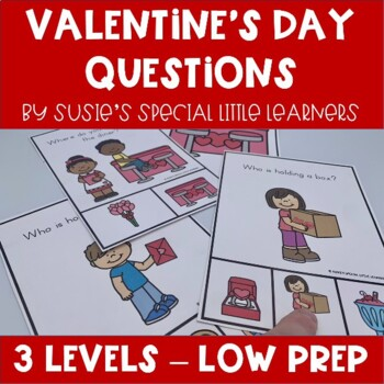 VALENTINES DAY VISUAL WHAT QUESTIONS FOR AUTISM AND SPECIAL ED