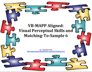 VB-MAPP Aligned: Visual Perceptual Skills Milestone 6