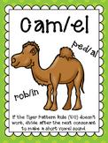 VC/ - Camel Pattern Words