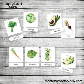 VEGETABLES | MONTESSORI Printable Nomenclature Cards