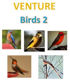VENTURE: Birds 2