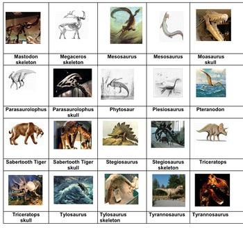 Science Adventure:: Dinosaurs