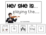Musical Instruments Adapted Book