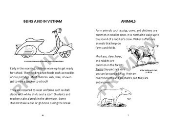 VIETNAM - Learn About Vietnam – A 23 Page Nonfiction Country Study Booklet