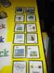 VIPKID - Flash Cards for Level 2 Unit 11 Set of 24 Flashcards