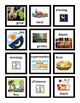 VIPKID - Flash Cards for Level 2 Unit 6 Set of 24 Flashcards