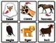 VIPKID Flashcards: Level 3 Animal Body Parts (MC-L3-U4)