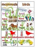 VIPKID L3-U5 Mammals/Birds/Fish/Reptiles MINIMALIST/NO MESS/TRAVEL SIZE cards