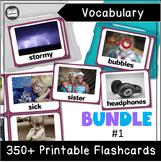 VIPKID Level 2 Interactive: Unit 1-12 Vocabulary Flashcards