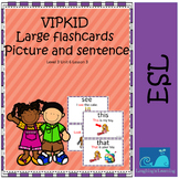 VIPKID Level 3 Unit 6 Large Flashcards With Picture and Sentence