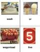 VIPKID Level 4 Flashcards for Lesson 4-11-1-3