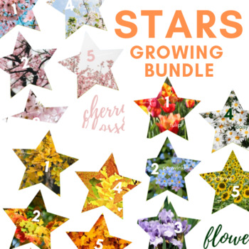 VIPKID Star Rewards Growing Bundle