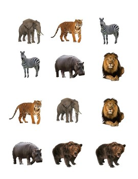 VIPKID Wild Animal Matching Game
