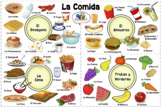 VISUAL AID/POSTER - FOOD in SPANISH! (Use digitally or cre