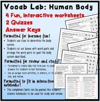 VOCAB LAB - Human Body Systems Functions & Components BONUS Word Wall