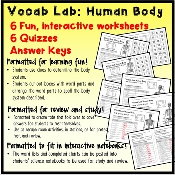 VOCAB LAB – Human Body – The Skeletal System, Bones, Joints, Disorders