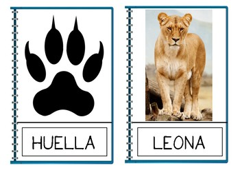 Lion Vocabulary (Spanish) | VOCABULARIO LEÓN