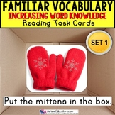 """VOCABULARY and PICTURES Task Cards WORD KNOWLEDGE """"Task Box Filler"""" Autism SET 1"""