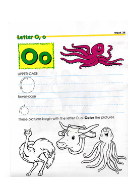 VOWEL LETTERS O,o