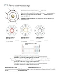 Valence Electrons worksheet/interactive notebook page