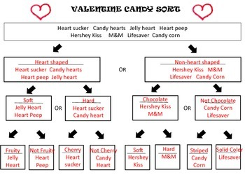 Valentine Candy Sort - using a dichotomous key