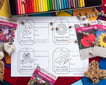 Valentine Flower Seed Packets