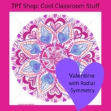 Valentine STEM or STEAM Kaleidoscope Activity for Math and Art