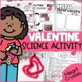 Valentine Science Activity- Heart Crystals