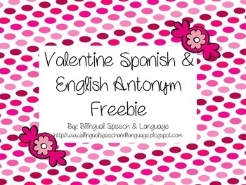 Valentine Spanish & English Antonyms FREEBIE