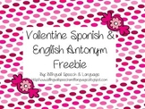 Valentine Spanish & English Antonyms FREEBIE