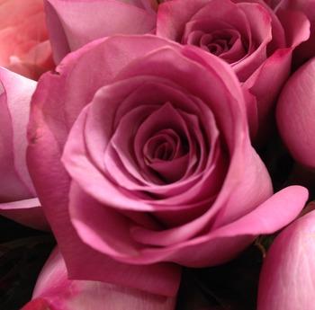 Valentine's Speech l words