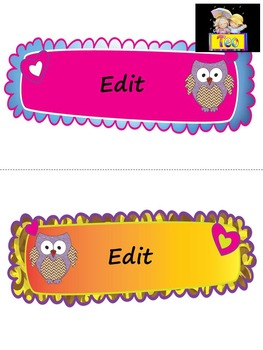 Owl Themed - Classroom Decor - Writing - Editable Labels
