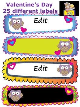 Owl Themed - Classroom Decor - Writing - Editable Labels